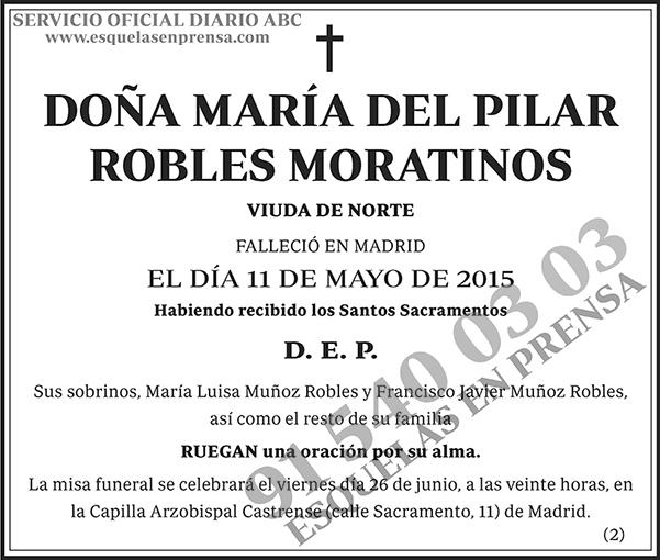 María del Pilar Robles Moratinos